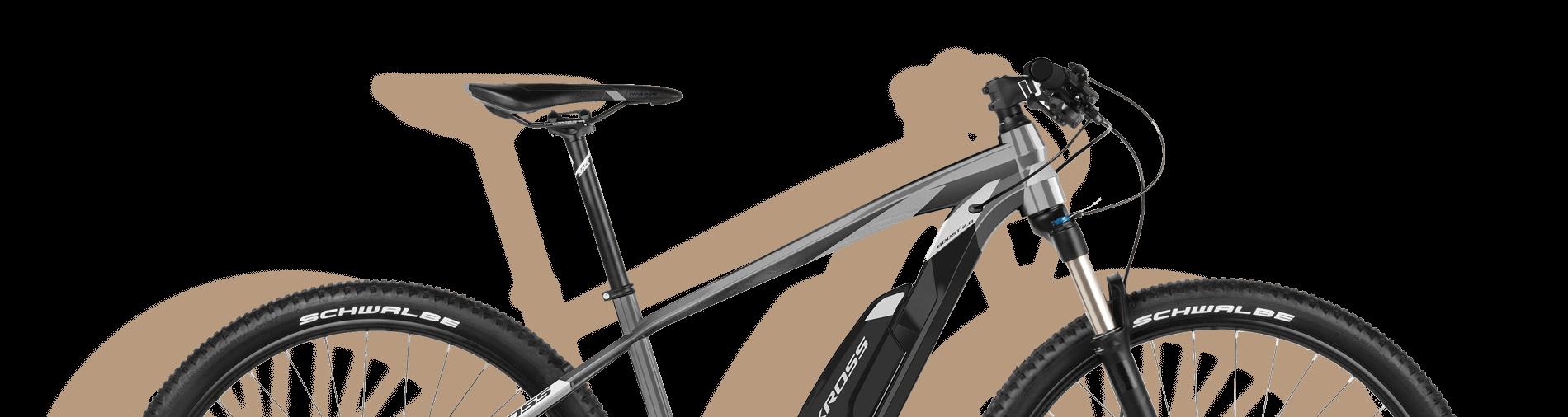 E-Fahrrad Rental
