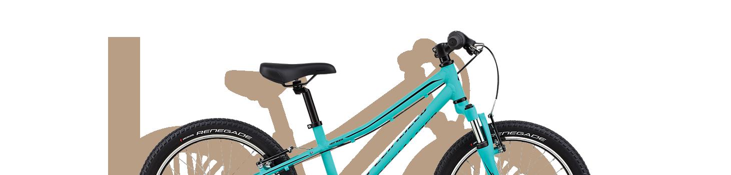 Child Bike 20 Rental
