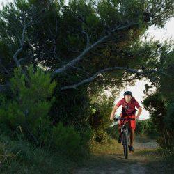 E-bike Tours in Istria