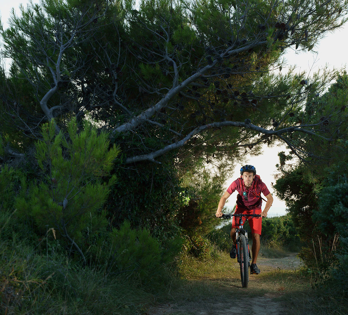 E-bike Tours in Istria